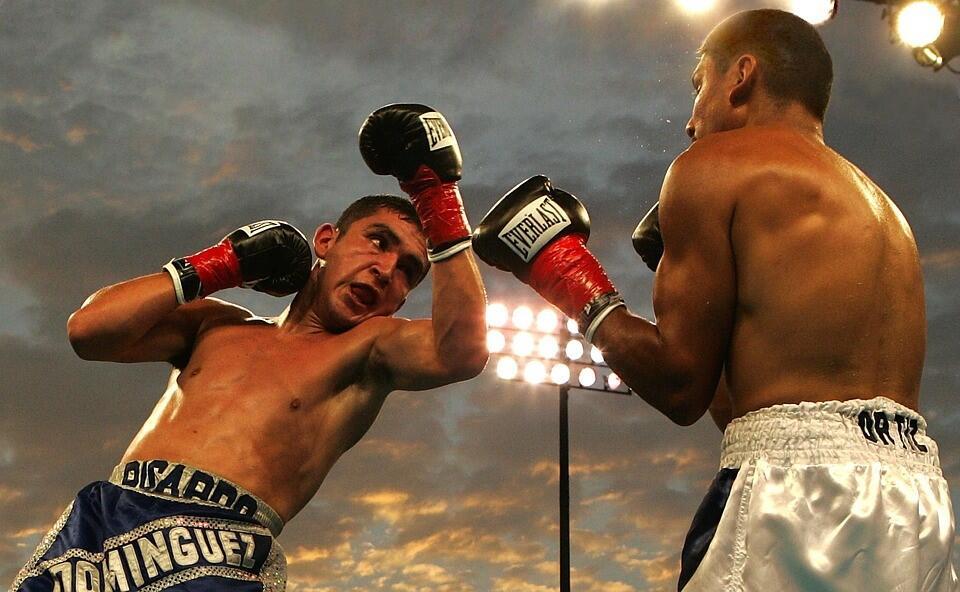 Лучшие боксеры мира